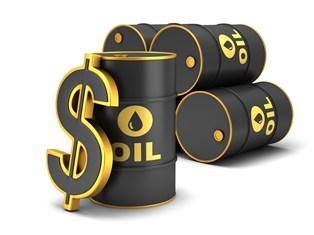 Investicijos į naftą