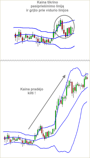 paaiškintos akcijų pardavimo galimybės