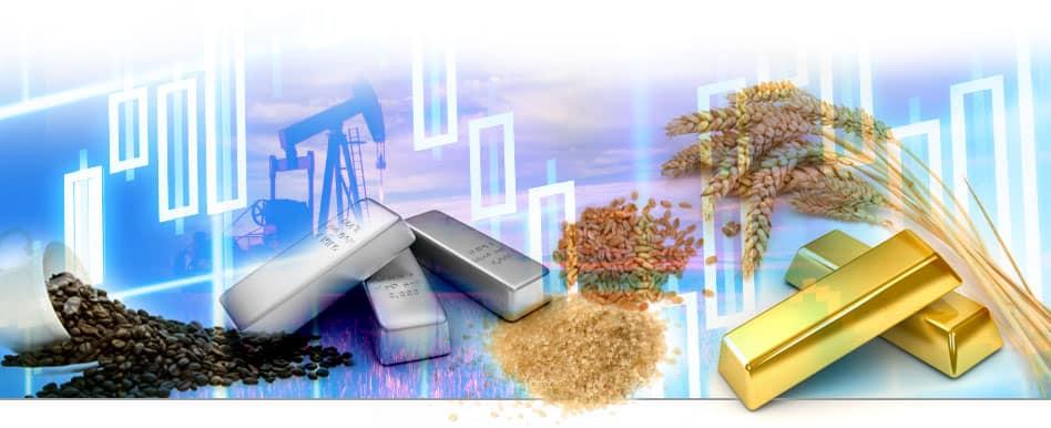 Investicijos į žaliavas
